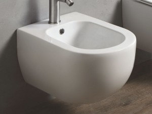 bridge-open-bidet-ambi2